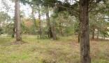 Property Terrain (YYWE-T24457) GUJAN MESTRAS