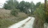 Property Bouches du Rhône (13), à vendre CHATEAURENARD - Terrain de 2710 m² - (KDJH-T228592)