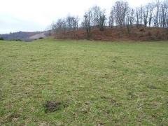 Property Dpt Pyrénées Atlantiques (64), à vendre ISSOR Terrain de 24540 m² - (KDJH-T219012)