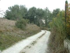 Property Dpt Bouches du Rhône (13), à vendre CHATEAURENARD - Terrain de 2710 m² - (KDJH-T228592)