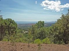 Property 643836 - Parcela en venta en La Zagaleta, Benahavís, Málaga, España (ZYFT-T5598)