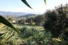 Property Dpt Corse (20), à vendre SERRA DI FERRO terrain de 4495 m² - (KDJH-T231172)