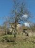 Property Terrain constructible (GKAD-T31578)